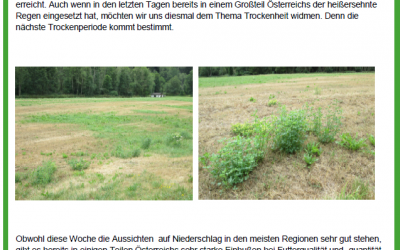 Samena Artikel zur Grünlandnutzung bei Trockenheit